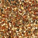 Graines de santé pour Canaris, Exotiques, Indigènes et Grandes perruches