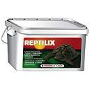 Reptilix Tortues terrestres