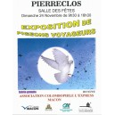 Exposition de pigeons voyageurs à venir !