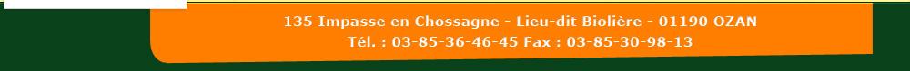 Parc d'activités économiques - en Bolière - 135 Impasse Chossagne - 01190 OZAN